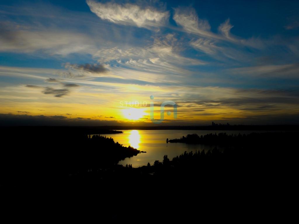 Ira_Rodriguez_Copyright_Studio_IA_Landscape_Bellevue_WA-0013-1