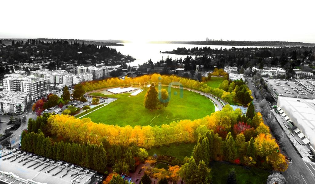 Ira_Rodriguez_Copyright_Studio_IA_Landscape_Bellevue_WA-0020-1